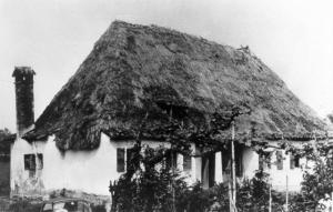 un casone a Mogliano (Mojan) abitazioni con tetti del tutto simili abitavano i paleo veneti