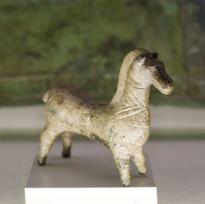cavallook